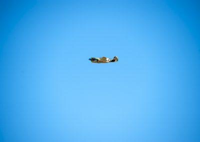 warbirds-37